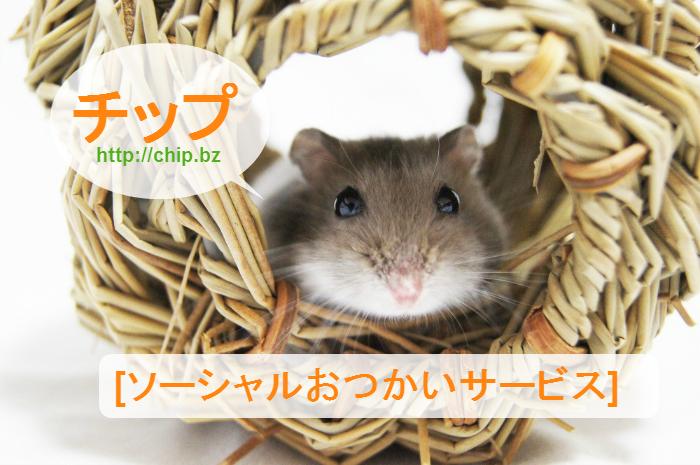 チップ_ソーシャルおこづかいサービス